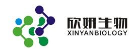 深圳市欣妍生物技术有限公司