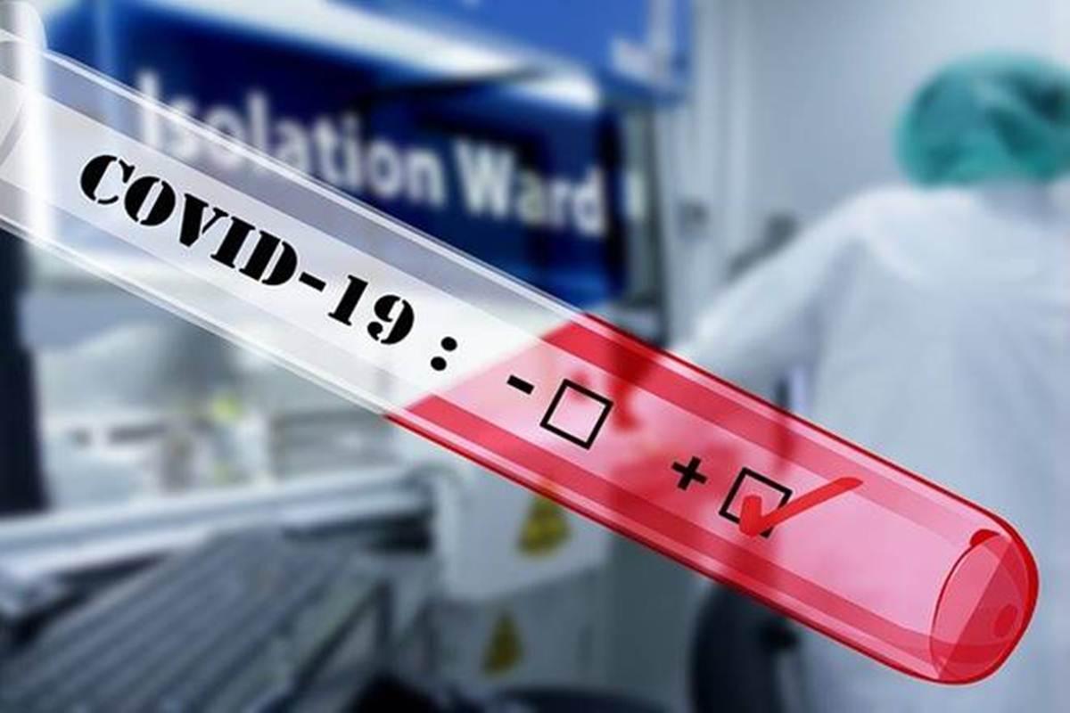 新冠肺炎药物相关API市场预计增长25.6%
