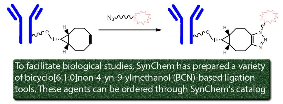 Synchem Inc