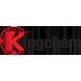 Kingchem Inc