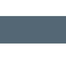 API Pharma Tech
